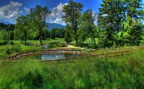 Картинка трава, пейзаж, природа, фото, Германия, Бавария