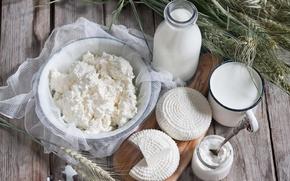 Картинка сыр, молоко, творог, milk, cheese, молочные продукты, cottage cheese