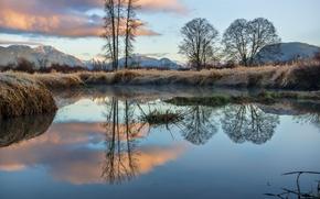 Картинка иней, небо, трава, облака, деревья, горы, озеро, отражение, Canada, British Columbia, канада
