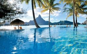 Картинка пальмы, океан, бассейн, курорт, french polynesia, bora-bora