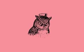 Обои Минимализм, Птица, Minimalism, Art Print, Alejandro Giraldo, Captain Owl, Капитан Филин