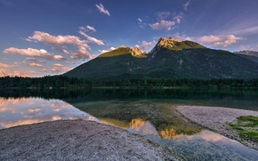 Картинка лес, природа, озеро, отражение, гора