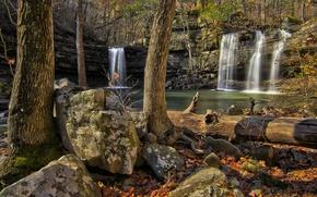 Картинка лес, деревья, скала, камни, водопад
