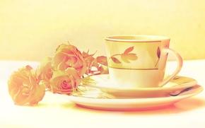 Картинка цвета, цветы, розы, обработка, чашка, натюрморт, блюдце, изображение, сервиз