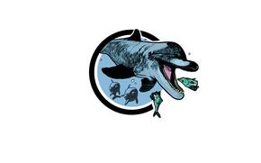 Картинка море, дельфин, рыбка, охота