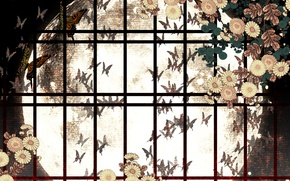 Картинка бабочки, цветы, ночь, Луна, окно