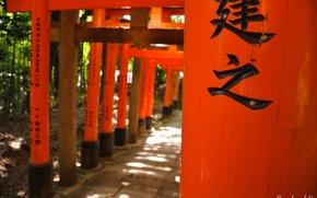 Картинка Япония, иероглифы, Japan, тории, красные ворота