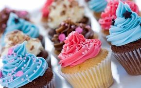 Картинка ассорти, выпечка, десерт, сладкое, кексы, украшение, крем, шоколад