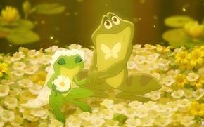 Картинка цветы, бабочка, лягушки, невеста, фата, свадьба, жених