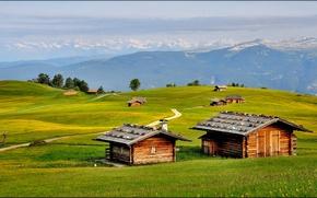 Картинка Альпы, горы, лето, дома, деревья, дороги