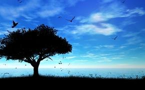 Обои море, небо, дерево, тень, птички