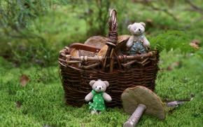 Картинка лес, корзина, игрушки, грибы, медвежата