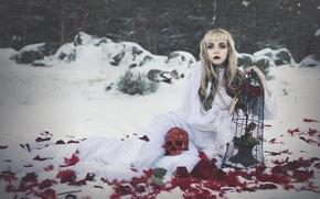 Картинка девушка, череп, розы, клетка, перья