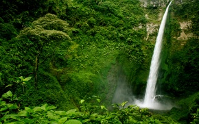 Обои Guatemala, водопад, деревья, кусты, скала, зелень, лес, обрыв