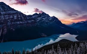 Обои лес, снег, закат, горы, озеро, вечер, Канада, Banff National Park, Банф, Пейто, Peyto Lake