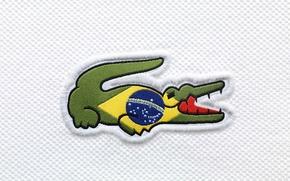 Картинка крокодил, флаг, Бразилия, Lacoste, flag, Brasil