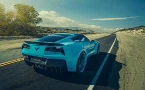 Обои chevrolet, corvette, c7, stingray, forgatio, blue, rear, car