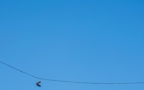 Обои небо, минимализм, кроссовки