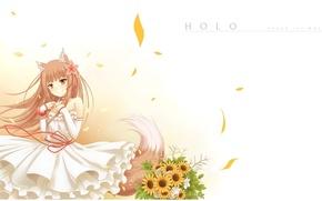Картинка улыбка, букет, лепестки, хвост, белое платье, ушки, Волчица и пряности, красная нить, Holo, Spice and …
