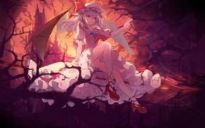 Картинка девушка, аниме, арт, touhou
