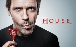 Обои хью лори, леденец, House, доктор хаус