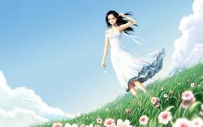 Картинка поле, трава, рисунок, Цветы