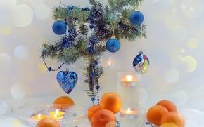 Картинка ветки, синий, стол, праздник, сердце, цвет, елка, новый год, фрукты, happy new year, елочные украшения, …