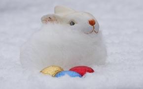 Картинка заяц, яйца, кролик, пасха, мех