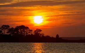 Картинка twilight, trees, sunset, water, lake, dusk, silhouettes
