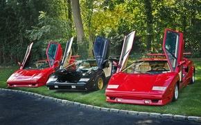 Обои открытые, трио, Lamborghini, двери, Countachs
