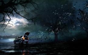 Обои мрак, рисунок, 157, багажник