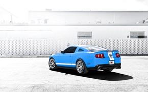 Картинка голубой, Mustang, Ford, Shelby, GT500, мустанг, мускул кар, форд, шелби, blue, задняя часть, спортивные полосы