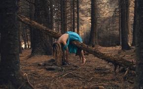 Картинка Wait here, платье, девушка, лес, Rosie Hardy