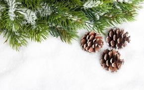 Обои снег, иголки, елка, ель, ветка, Новый Год, Рождество, Christmas, шишки, New Year