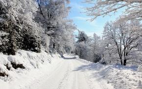 Картинка дорога, снег, деревья, Зима