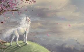 Картинка обрыв, дерево, волк, сакура, символы, холм, арт