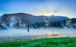 Картинка трава, горы, туман, озеро, рассвет