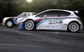 Картинка авто, спорт, гонки, легенда, ралли, T16, Peugeot 208