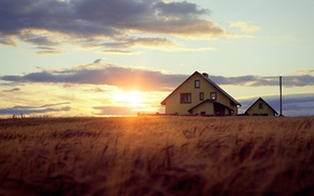Обои небо, трава, солнце, облака, лучи, свет, деревья, закат, вечер, домик, боке