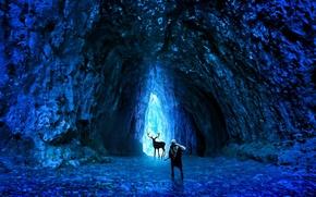 Картинка холод, лед, оружие, человек, олень, арт, пещера, романтика апокалипсиса, romantically apocalyptic, alexiuss