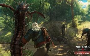 Обои сколопендроморфы, убийца, ведьмак, Кровь и Вино, Blood and Wine, DLC, мечи, Ведьмак 3: Дикая Охота, ...