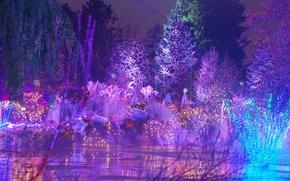 Обои пейзаж, новый год, гирлянды, парк