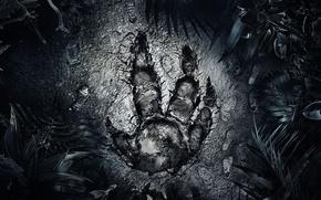 Картинка Лес, Монстр, Следы, Голиаф, 2K Games, Evolve, Goliath, Turtle RockStudios