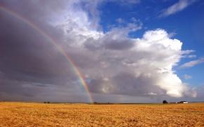 Обои радуга, поле, облака