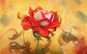 Картинка роза, текстура, арт