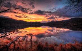 Картинка отражение, деревья, озеро, вода, вечер, облака, небо, ветки, лес, закат