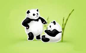 Картинка листья, бамбук, пара, зеленый фон, панды