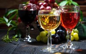 Картинка вино, бокалы, виноград