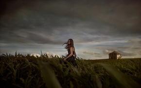 Обои девушка, поле, ночь