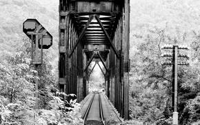 Картинка дорога, лес, мост, фото, железная, черно-белое, black and white